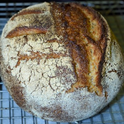 Organic Whole Wheat Sourdough